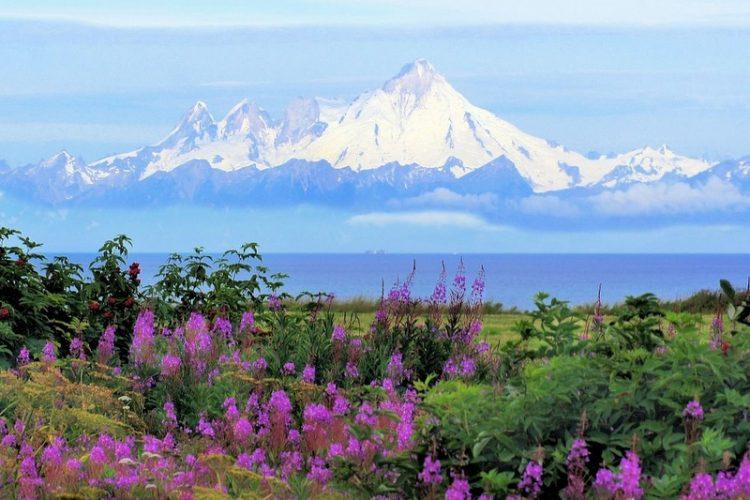 Ludvigs in Sitka, Alaska
