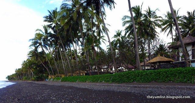 Tembok Bali Spa Village, YTL