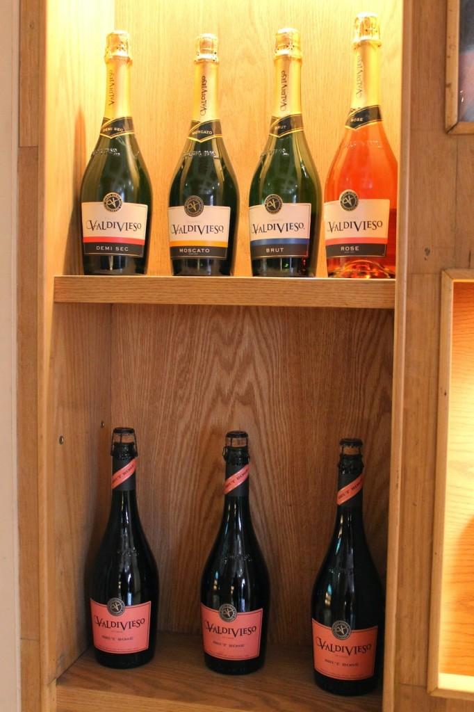 Valdivieso vineyard