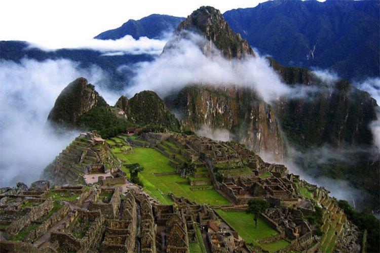 Peruvian Promotion, La Bodega