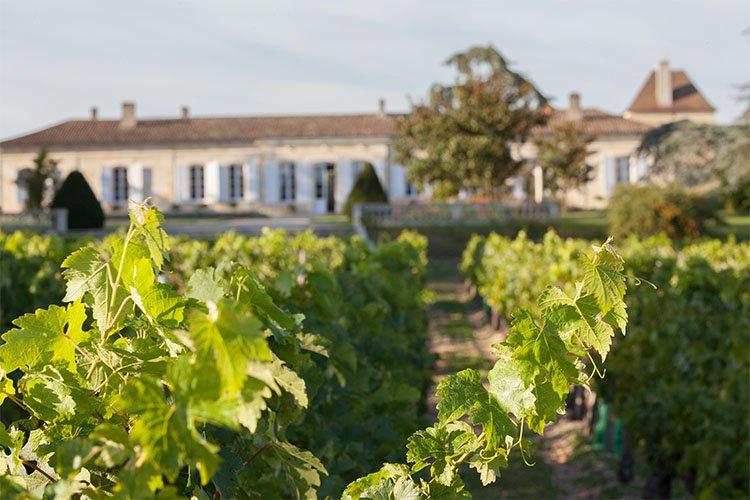 Barton & Guestier, Bordeaux, France