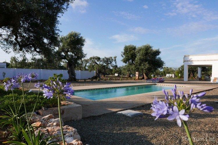 Twin Geckos Villa Pool