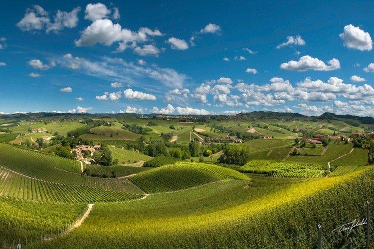 Ethica Wines - Cordero di Montezemolo